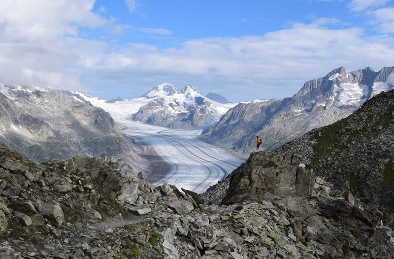 Views of the Aletsch Glacier from near Eggishorn 2 web